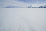 Pack Ice with Mountain Range in Distance Reproduction photographique par  DLILLC