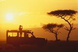 Looking for Animals on Safari Reproduction photographique par  DLILLC