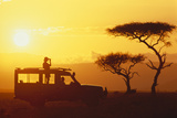 Looking for Animals on Safari Photographic Print by  DLILLC