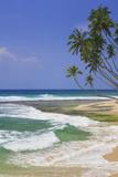 Sri Lanka Beach and Palm Trees Photographic Print by Jon Hicks