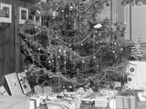 Christmas Tree with Presents, Ca. 1950. Photographic Print by Kirn Vintage Stock