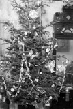 Still Life of Early 20Th Century Christmas Tree, Ca. 1910. Photographic Print by Kirn Vintage Stock