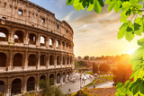 Colosseum at Sunset in Rome, Italy Photographic Print by  sborisov