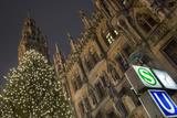 Christmas Tree at Neues Rathaus in Munich Lámina fotográfica por Jon Hicks
