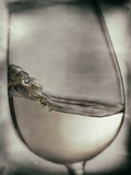 Swirling White Wine Photographic Print by Steve Lupton