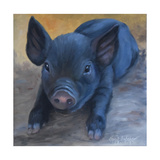 Cole's Baby Pig Poster by Cheri Wollenberg