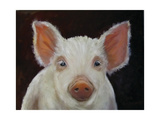 Chester White Pig Posters af Cheri Wollenberg