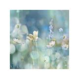 Morning Meadow II Impressão giclée por Kate Carrigan