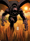 Black Panther No.1 Cover: Black Panther Wall Decal by John Romita Jr.