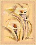 Flores Estereas I Prints by L. Romero