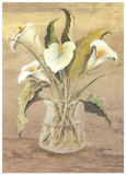 White Lilies In Crystal Prints by Luis Romero