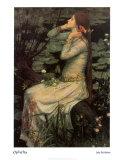 Ophelia, c.1894 Posters af John William Waterhouse