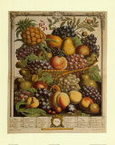 Fruits of the Season Winter Prints by Robert Furber