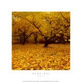 Prunus Posters by Bent Rej