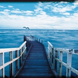 Pier and Dolphins Photographic Print by Colin Anderson