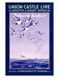 Voyages en Afrique, lignes Union Castle Reproduction procédé giclée