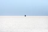 A Man Rides a Bicycle on the Surface of the World's Largest Salt Flat, the Salar De Uyuni Fotografisk trykk av Jorge Silva
