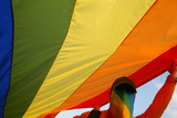 A Member of Romania's Gay Community Holds a Rainbow Flag During a Gay Parade in Bucharest Photographic Print by Bogdan Cristel