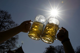People Pose for a Photograph as They Toast with Beer on a Sunny Day in Munich's English Garden Fotografisk tryk af Michaela Rehle