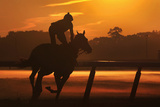 A Horse and its Rider are Seen in Silhouette During Early Morning Workouts Photographic Print by Shannon Stapleton
