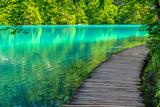 Pond at Plitvice Lakes National Park in Spring Fotografisk tryk af  zkbld