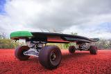 Vintage Style Longboard Black Skateboard Premium fotografisk trykk av  underworld
