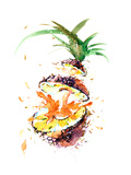 Pineapple Giclee Print by  okalinichenko