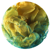 Color Drop World Photographic Print by  sanjanjam