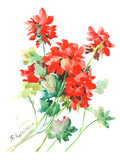 Geranium Red Prints by Suren Nersisyan
