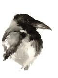 Crow Affiches par Suren Nersisyan