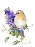 Robin Affiches par Suren Nersisyan
