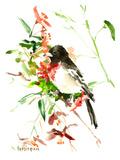 Cardinal à poitrine rose Posters par Suren Nersisyan