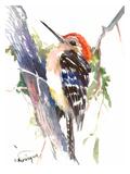 Red Headed Woodpecker Affiche par Suren Nersisyan