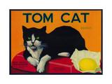 Tom Cat Lemon Label - Orosi, CA Konst på metall av  Lantern Press