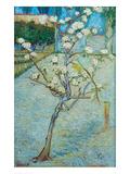 Blossoming Pear Tree Poster af Vincent van Gogh