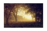 Golden Light of California Giclée-tryk af Albert Bierstadt