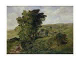 View of Nantlle, Caernarvonshire, 1855 Giclee Print by Alfred William Hunt