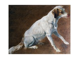 French Spaniel Ancestor, by Alexandre-Francois Desportes (1661-1743), France, 18th Century Giclee Print by Alexandre-Francois Desportes