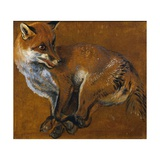 Fox with Legs Tied, by Alexandre-Francois Desportes (1661-1743), France, 18th Century Giclee Print by Alexandre-Francois Desportes