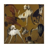 Study of Birds and Dogs, by Alexandre-Francois Desportes (1661-1743), France, 18th Century Giclee Print by Alexandre-Francois Desportes