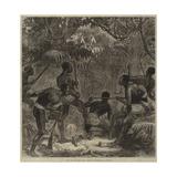 The War on the Gold Coast, Ashantees in Ambush Gicléetryck av Hopkins, Arthur