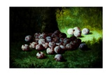 Plums, C.1870 Giclee Print by Carducius Plantagenet Ream