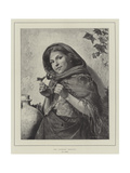 The Youthful Botanist Giclee Print by Antonio Rotta