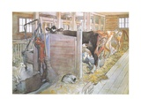Johana Milking the Cows Giclée-tryk af Carl Larsson