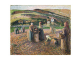 Picking Potatoes, 1893 Reproduction procédé giclée par Camille Pissarro