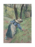 Peasant Woman Weeding the Grass (Pastel Heightened in Places with a Pink Wash) Reproduction procédé giclée par Camille Pissarro