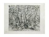Paysage Sous Bois, À L'Hermitage (Pontoise), 1879 Reproduction procédé giclée par Camille Pissarro