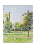 Study of the Orchard of the Artist's House at Eragny-Sur-Epte, C. 1890 Reproduction procédé giclée par Camille Pissarro