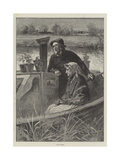 Down Stream Giclee Print by Davidson Knowles
