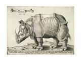 Rhinoceros, 1548 Giclée-Druck von Enea Vico